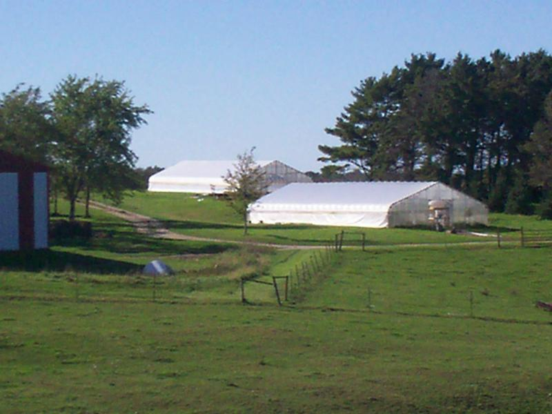 2 greenhouses